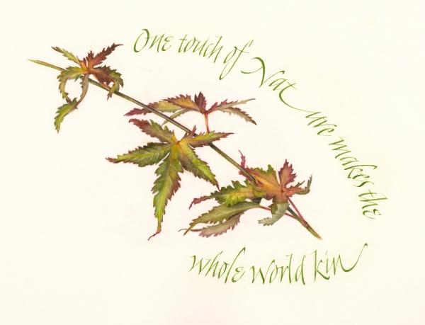 Maple Leaves by Renée Alexander